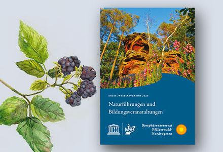 Jahresprogramm | UNESCO Biosphärenreservat Pfälzerwald-Nordvogesen